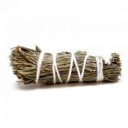 Atado purificante - pino 10cm