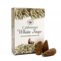 12 Packs incienso Golden Nag - Salvia blanca 15gr