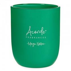 3 Velas aromáticas vaso - Te verde y lima