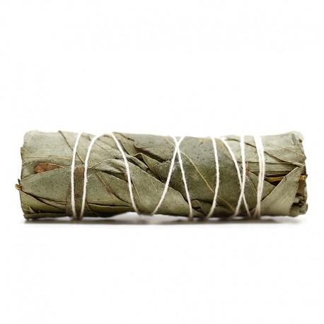Atado purificante - eucalipto 10cm