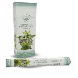 6 packs Incienso Green Tree - Salvia blanca y yerba santa