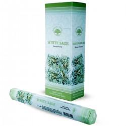 6 packs Incienso Green Tree - Salvia blanca