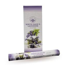6 packs Incienso Green Tree - Salvia blanca y lavanda