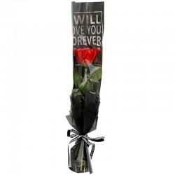 "10 Rosas ""forever"" - roja"
