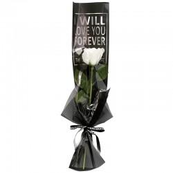 """10 Rosas """"forever"""" - blanca"""