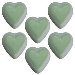 5 Bolsitos 6 ceras de soja - aroma menta