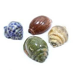 12 Caracolas gemas surtido