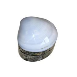 4 Cajas pequeña concha perla Blanca