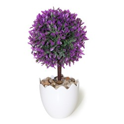 Arbolito hoja espatulada púrpura