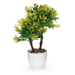 Arbolito doble hoja elíptica verde limón