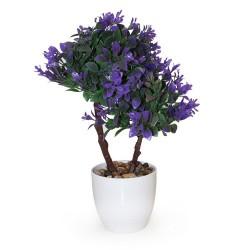 Arbolito doble hoja elíptica verde púrpura