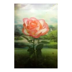 Lámina 3D flor
