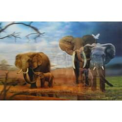 10 Láminas 3D elefantes