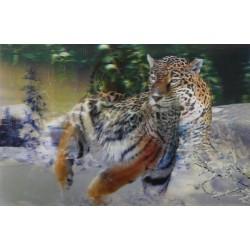 10 Láminas 3D leones y tigres