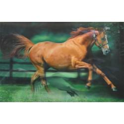 10 Láminas 3D caballos | cisnes
