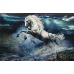 10 Láminas caballo agua