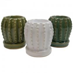 12 Quemadores cerámica - cactus variados