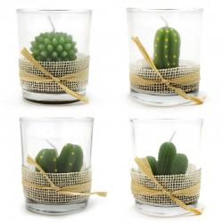 Caja 12 velas vaso - cactus variados