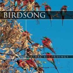 Nature Sound BirdSong