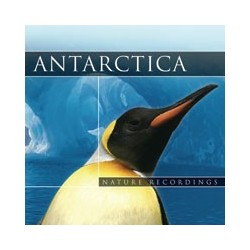Nature Sound Antartica
