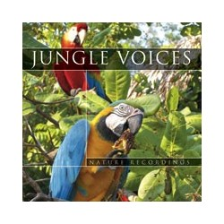 Nature Sound Jungle Voices