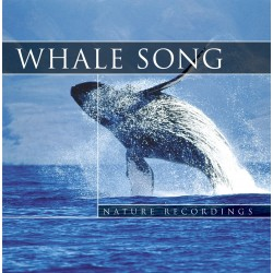 Nature Sound Whale Song