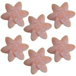 5 Bolsitos 6 ceras soja - aroma tuberosa