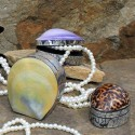 Cajitas concha marina