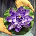 Flores lotus flotantes